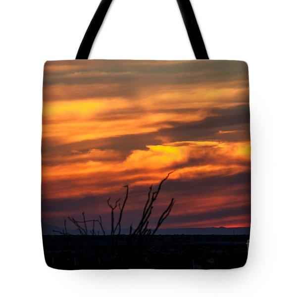 Ocotillo Sunset Tote Bag by Robert Bales