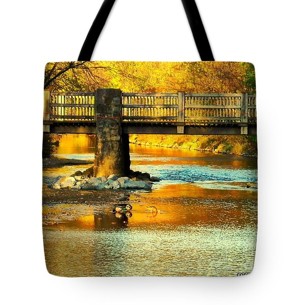October At Robin Hood Dell Tote Bag