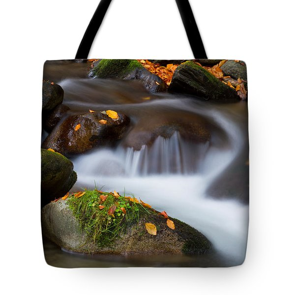 October Detail Tote Bag by Mircea Costina Photography