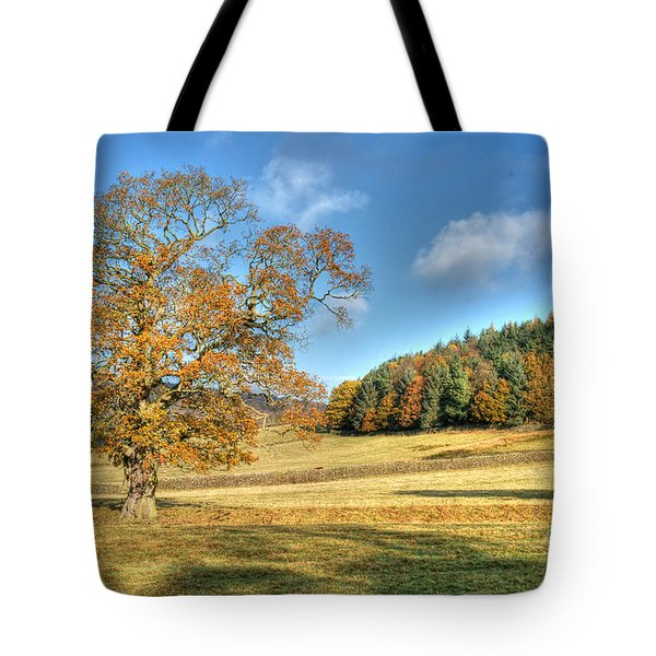 Tote Bag featuring the photograph October Gold by David Birchall