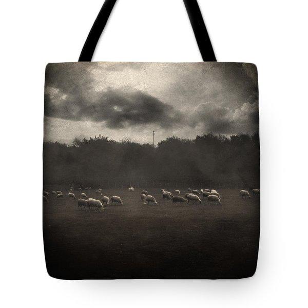October Insight Tote Bag by Taylan Apukovska
