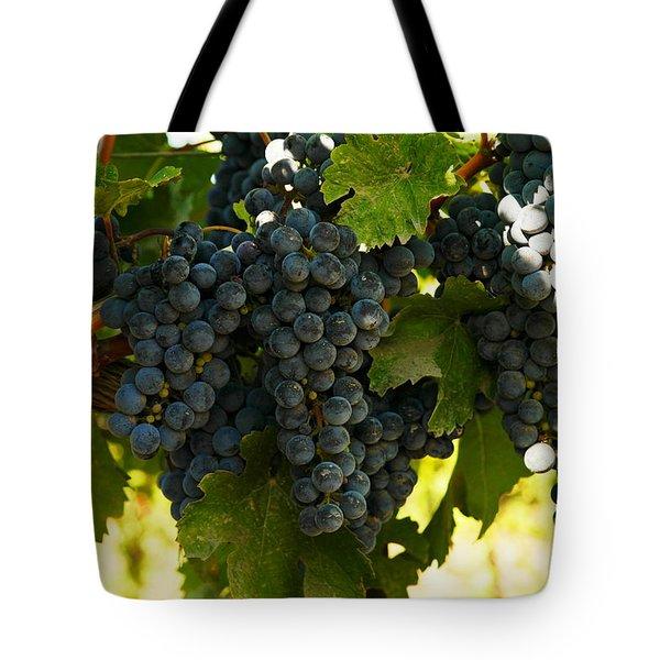 October Vintage Bonair Winery  Tote Bag by Jeff Swan