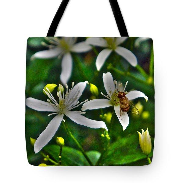 Odd Beauty Tote Bag
