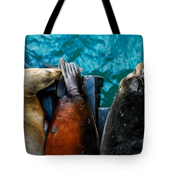 Odd Man Out California Sea Lions Tote Bag