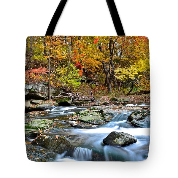 Odd Shape Tote Bag by Frozen in Time Fine Art Photography