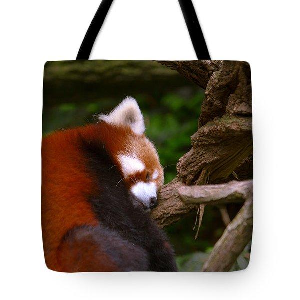 Oh So Sleepy Tote Bag