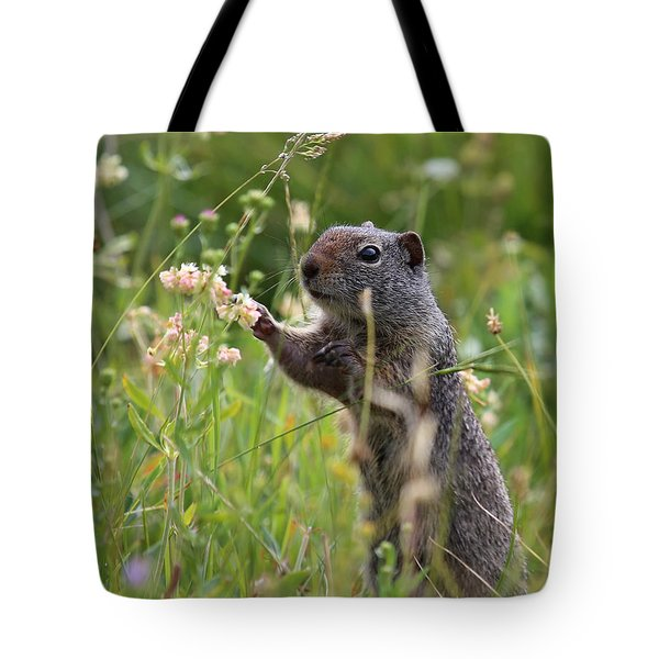 Oh These Are Pretty Tote Bag
