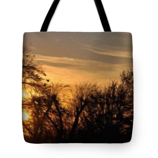 Oklahoma Sunset Tote Bag by Jeffrey Kolker