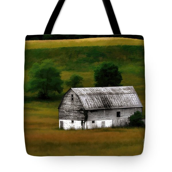 Old Barn Near Buckhannon Tote Bag by Dan Friend