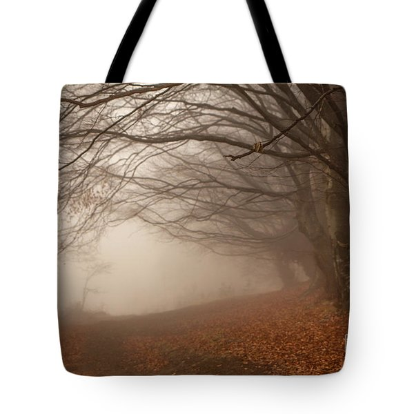 Old Beech Trees In Fog Tote Bag