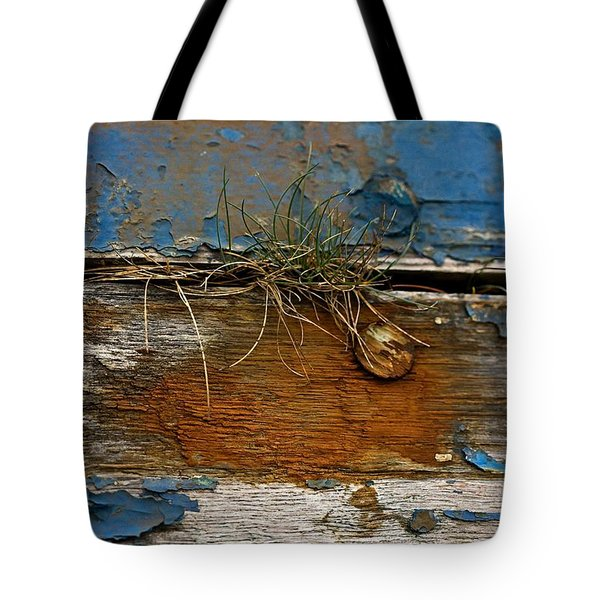 Tote Bag featuring the photograph Old Boat - Peeling Paint by Liz  Alderdice