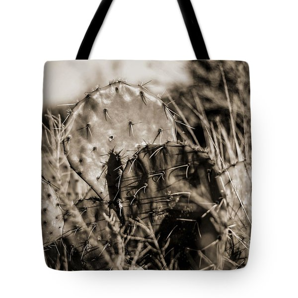 Tote Bag featuring the photograph Old Cactus by Amber Kresge