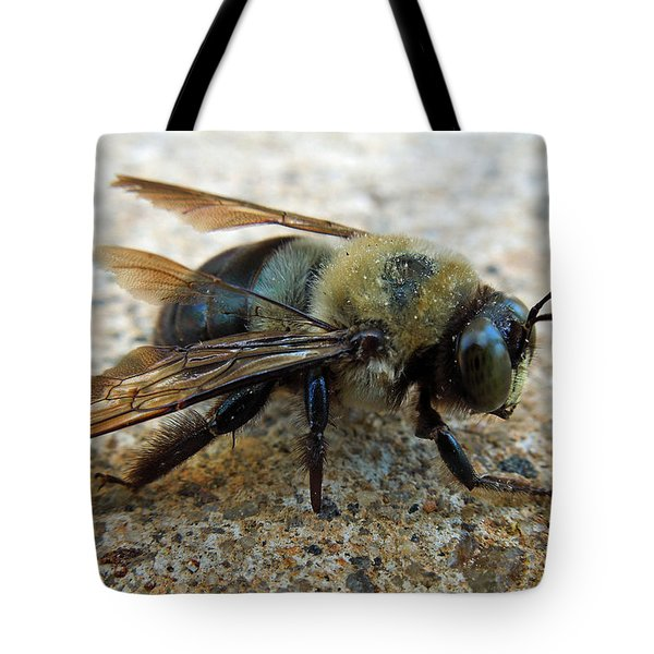 Old Carpenter Bee Tote Bag