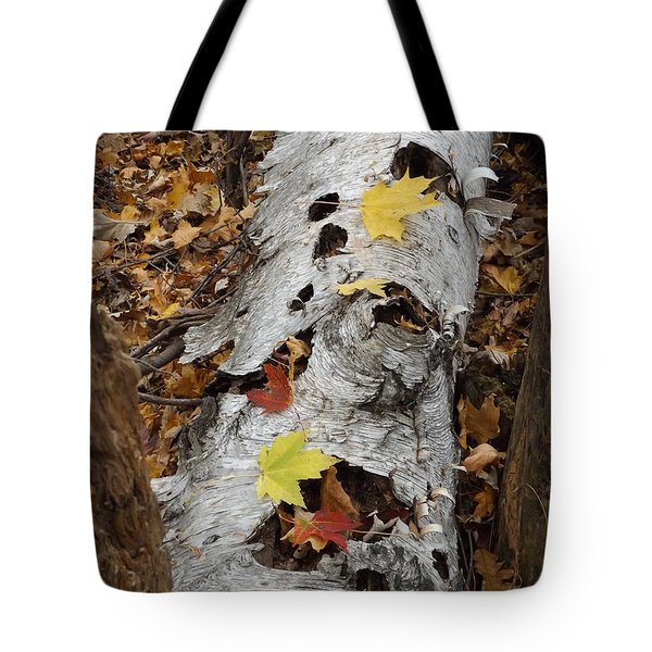 Old Fallen Birch Tote Bag