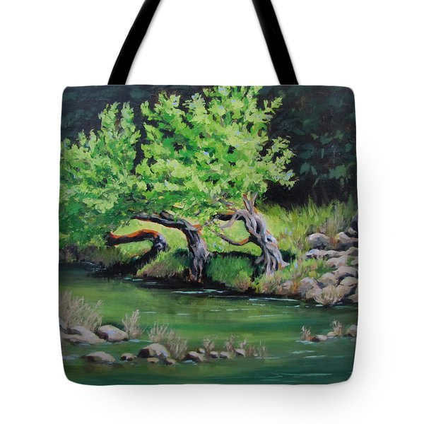 Tote Bag featuring the painting Old Friends by Karen Ilari