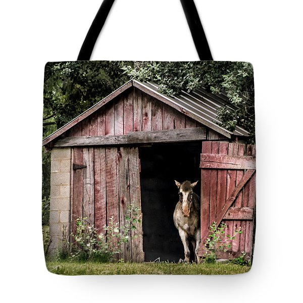 Old Gray Mare Tote Bag by Debbie Green