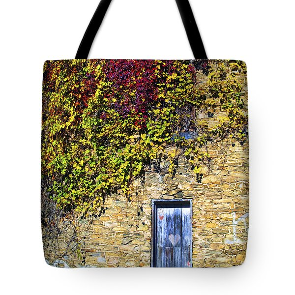 Old Mill Door Tote Bag by Paul W Faust -  Impressions of Light