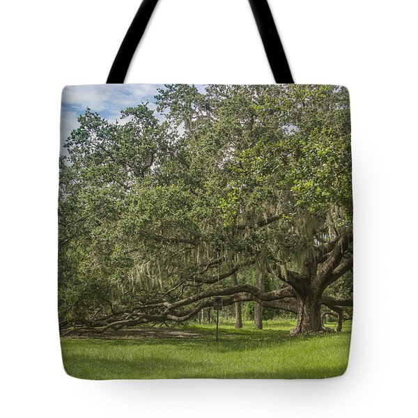 Tote Bag featuring the photograph Old Oak Tree by Jane Luxton