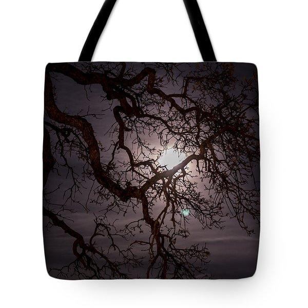 Old Oak Tree Tote Bag