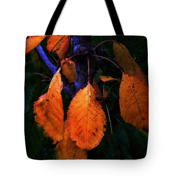 Old Orange Leaves Tote Bag
