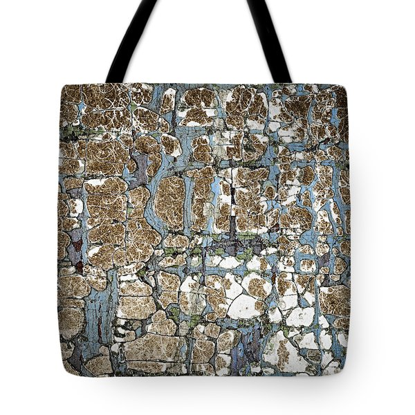 Old Painted Wood Abstract No.5 Tote Bag by Elena Elisseeva