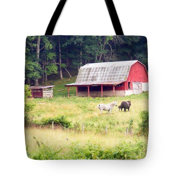 Old Red Barn West Of Brevard Nc Tote Bag