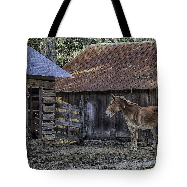 Old Red Mule Tote Bag