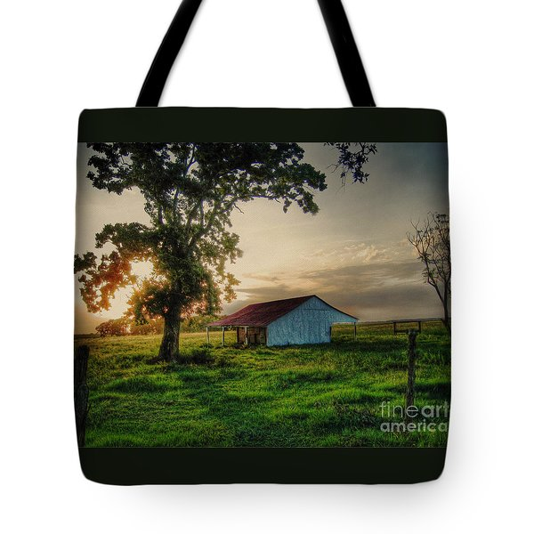 Tote Bag featuring the photograph Old Shed by Savannah Gibbs