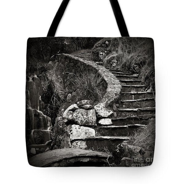 Tote Bag featuring the photograph Old Stone Stairway by Charmian Vistaunet