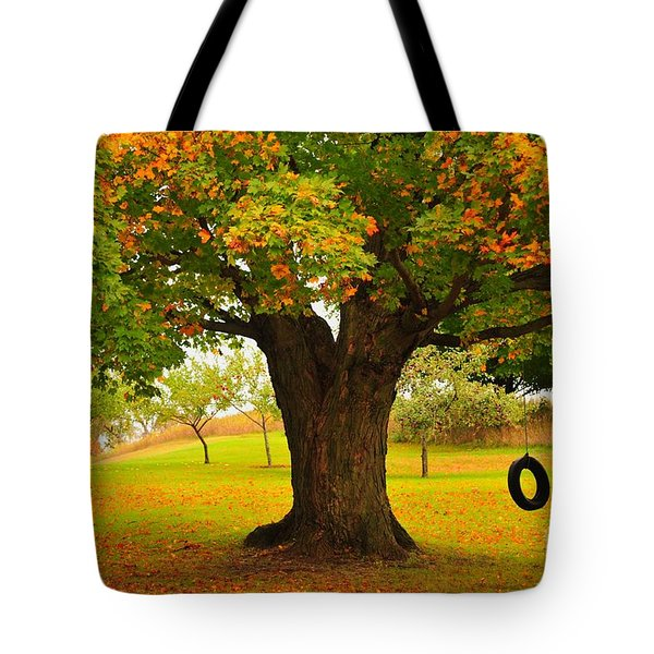 Old Tire Swing Tote Bag by Terri Gostola