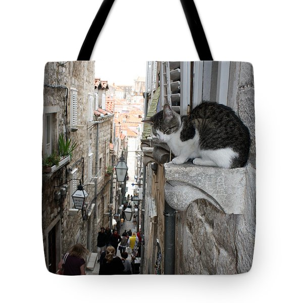 Old Town Alley Cat Tote Bag by David Nicholls