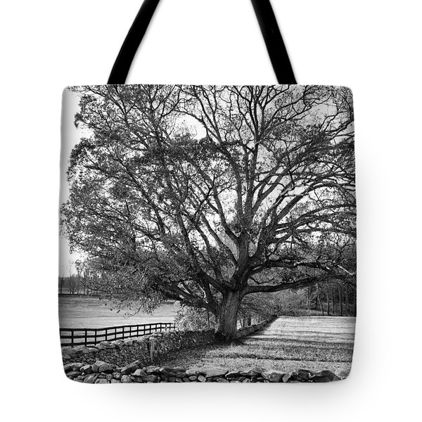 Tote Bag featuring the photograph Old Tree In Black And White by John S