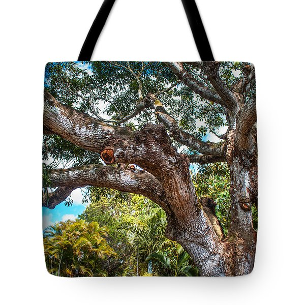 Old Tree In Eureka. Mauritius Tote Bag by Jenny Rainbow