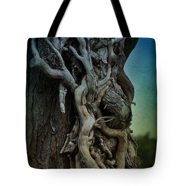Old Vine Tote Bag by Mary Machare