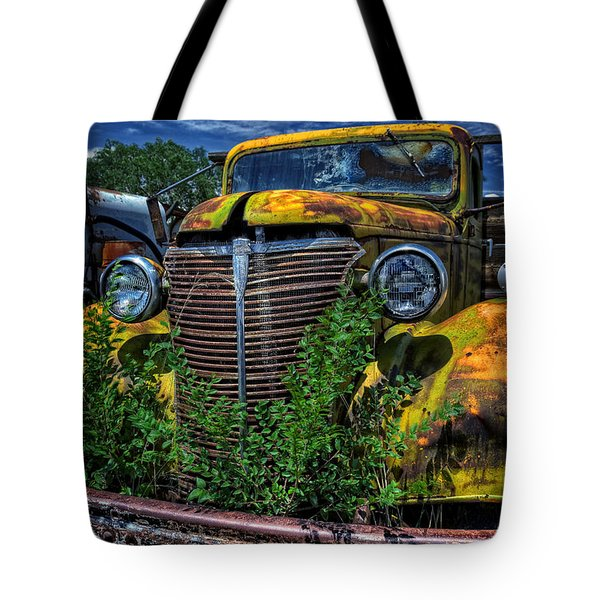 Tote Bag featuring the photograph Old Yeller by Ken Smith