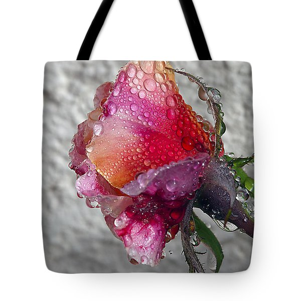 Tote Bag featuring the photograph Olde English by Joe Schofield
