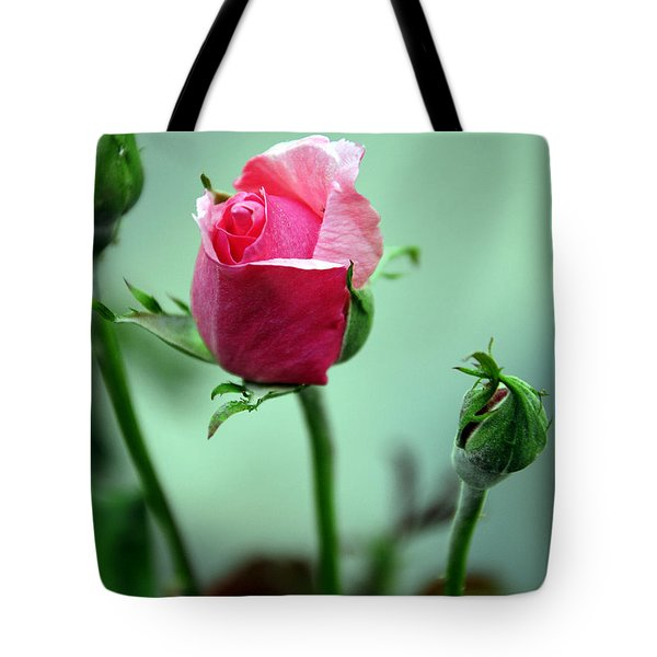 Tote Bag featuring the photograph Oldest Sibling by Clayton Bruster
