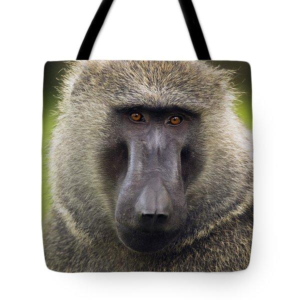 Olive Baboon Male Kibale Np Uganda Tote Bag