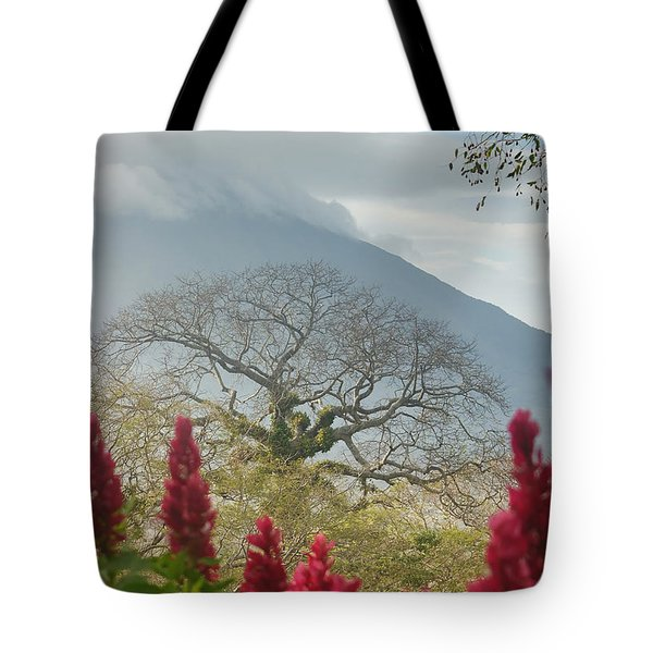 Tote Bag featuring the photograph Ometepe Island 1 by Rudi Prott