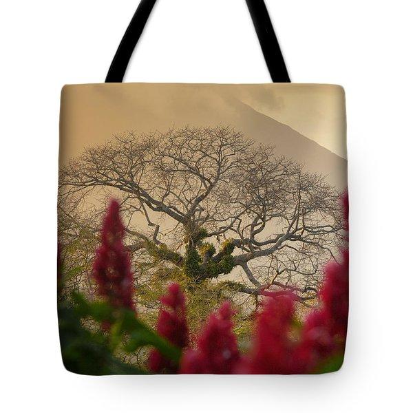 Ometepe Island Nicaragua 4 Tote Bag by Rudi Prott