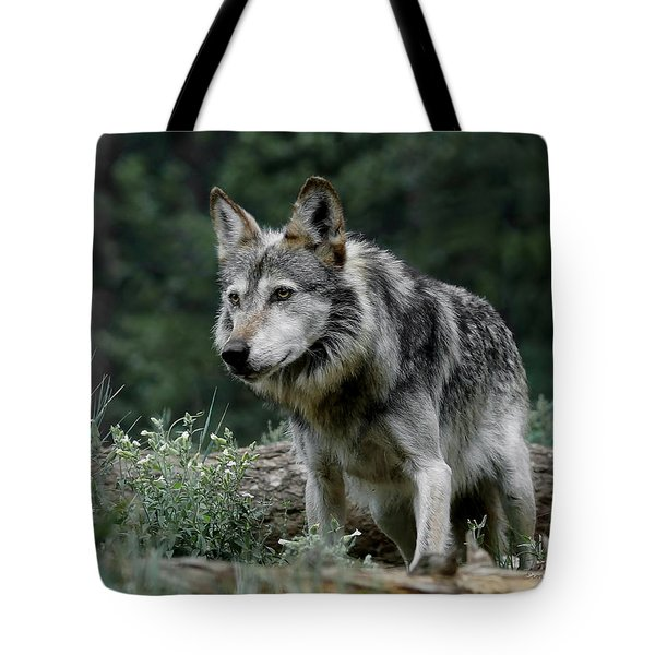 On Alert Tote Bag by Ernie Echols