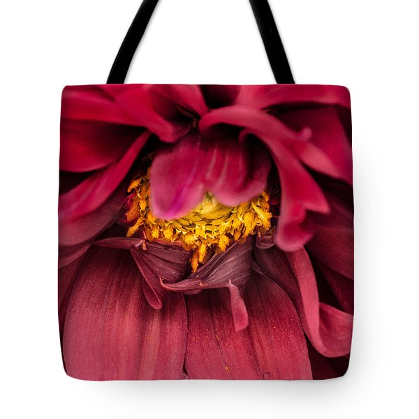 Tote Bag featuring the photograph On Fire by Edgar Laureano