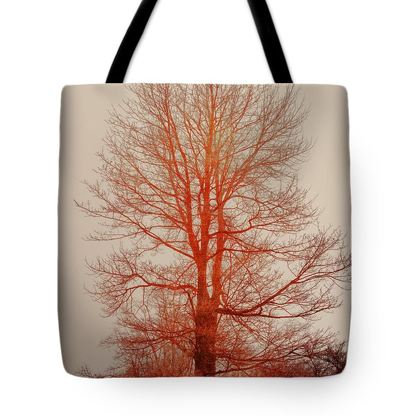 On Fire In The Fog Tote Bag by Lois Bryan