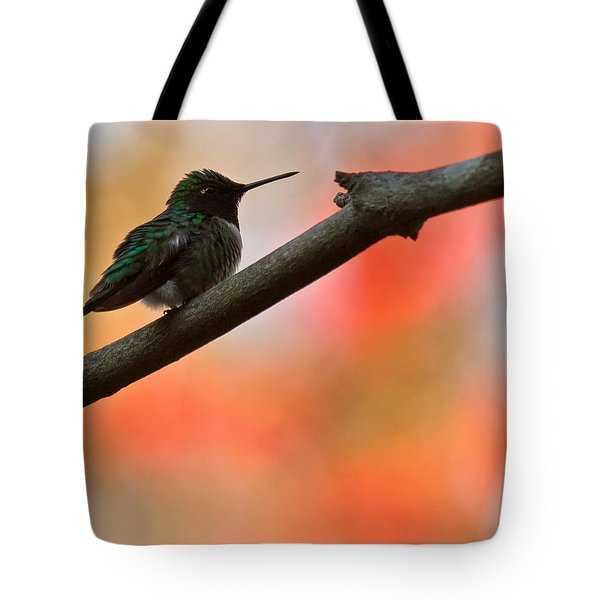 On Guard Tote Bag by Robert L Jackson