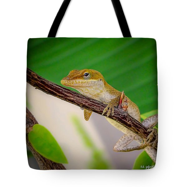 On Guard Squared Tote Bag by TK Goforth