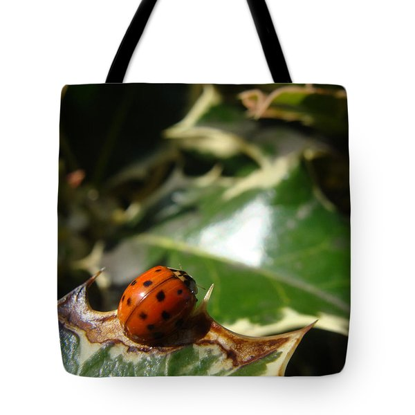 Tote Bag featuring the photograph On The Edge by Cheryl Hoyle
