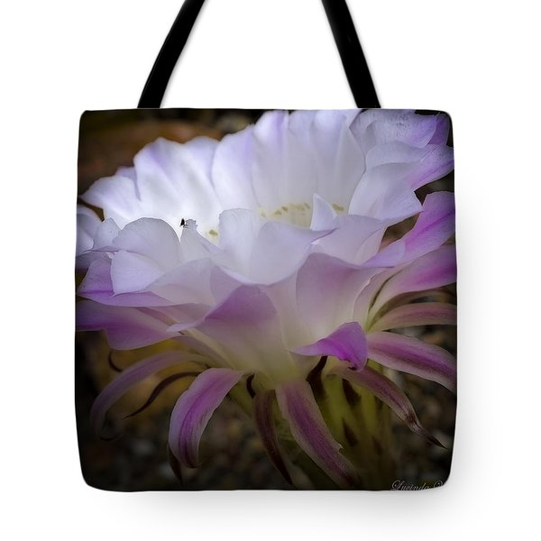 Tote Bag featuring the photograph On The Edge by Lucinda Walter