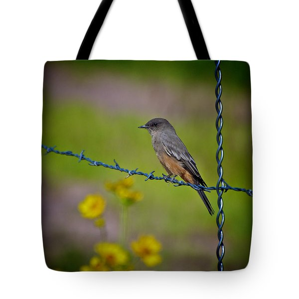 Tote Bag featuring the photograph Say's Phoebe by Britt Runyon