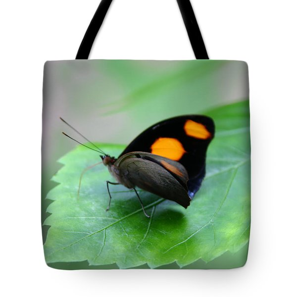 On The Leaf Tote Bag by Denyse Duhaime