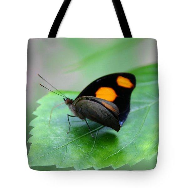 On The Leaf Tote Bag